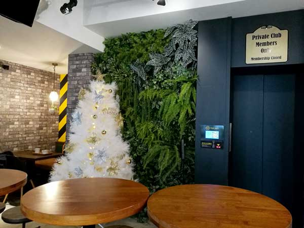 グリーンウォール-Twin Brothers Cafe:台北東区でゆっくり読書ができるカフェ-idobon.com